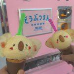 ★ 松本がおすすめする ice cream ★
